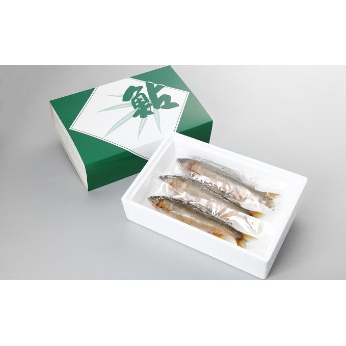 【ふるさと納税】天然鮎(冷凍)約500g 【魚貝類・鮎・アユ】