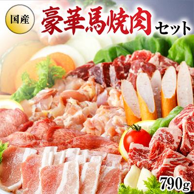 【ふるさと納税】馬肉専門店だからできる 豪華馬焼肉セット 【馬肉】