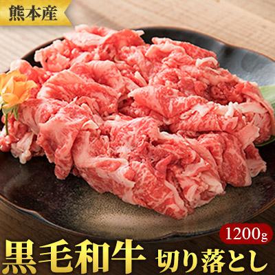【ふるさと納税】熊本産黒毛和牛切り落とし1000g  【牛肉・お肉】