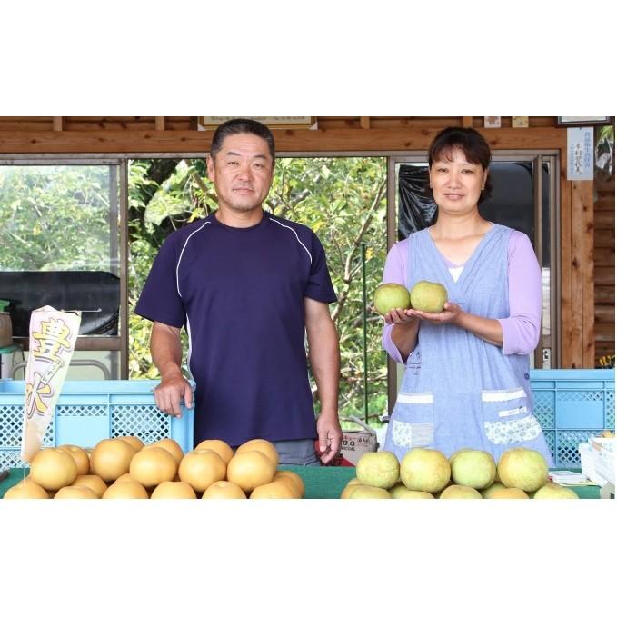 【ふるさと納税】本村果樹園 にしき梨(5kg) 【梨・ナシ・果物・フルーツ】 お届け:2020年8月中旬~10月下旬