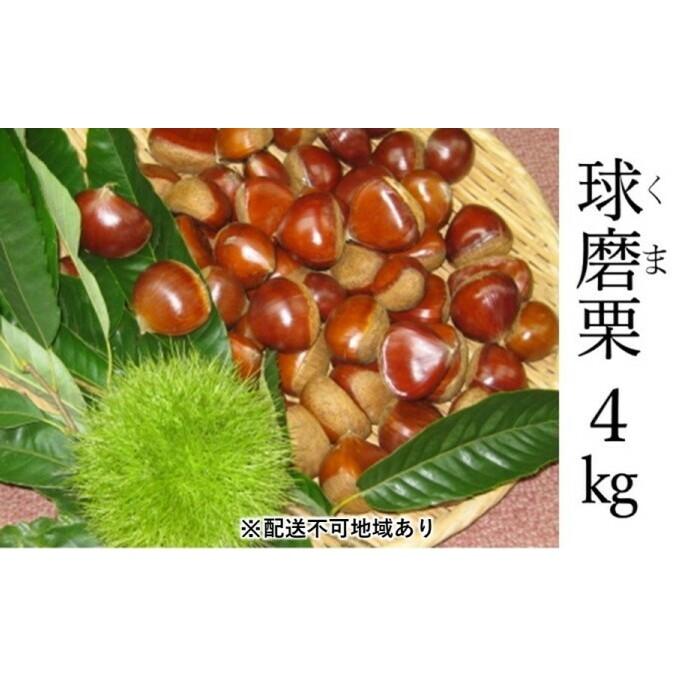 【ふるさと納税】賀久農園の球磨栗 約4kg 【果物類・くり・栗】 お届け:2020年9月下旬~11月上旬