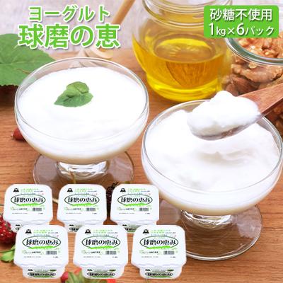 【ふるさと納税】球磨の恵ヨーグルト 1kg×6パック(砂糖不使用) 【乳製品・ヨーグルト】