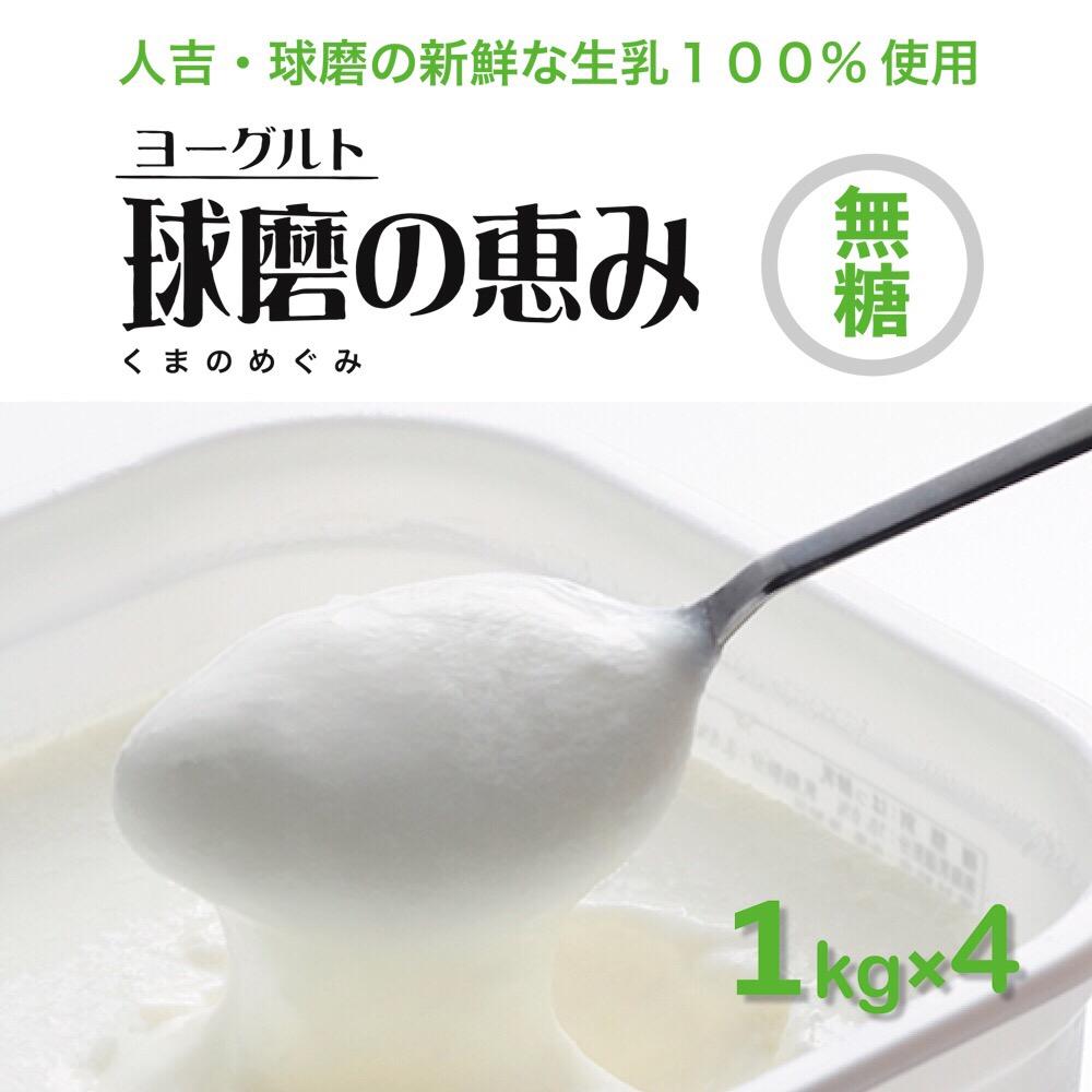 【ふるさと納税】球磨の恵み ヨーグルト プレーン 砂糖不使用 無糖 1kg 4パック 合計4kg 人吉球磨産 乳製品 大容量 送料無料