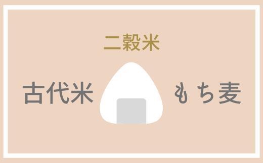 【ふるさと納税】二穀米(紫黒米×もち麦)800g 2袋セット とよはら農園 雑穀 麦 もち麦 熊本県産 相良村産 送料無料
