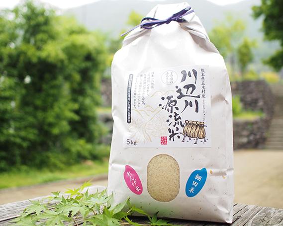 【ふるさと納税】No.076 五木の掛け干し米5kg / お米 精米 れんげ米 熊本県 特産