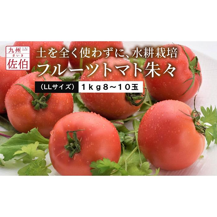 【ふるさと納税】フルーツトマト朱々(LLサイズ) 1kg 8~10玉