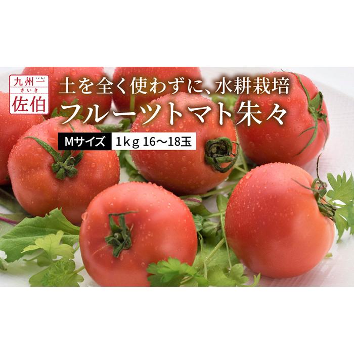 【ふるさと納税】フルーツトマト朱々(Мサイズ) 1kg 16~18玉