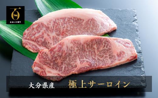 【ふるさと納税】片桐さんの「おおいた和牛」サーロインステーキ(200g×2枚)