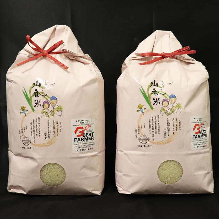 【ふるさと納税】B0059 山香ゆうきの会のお米(精米あきさかり5kg×2袋)