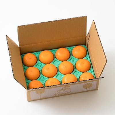 【ふるさと納税】野菜ソムリエ石児さんの「優品 せとか2.5kg」(ご家庭用) 予約 果物 フルーツ<05-A0086>