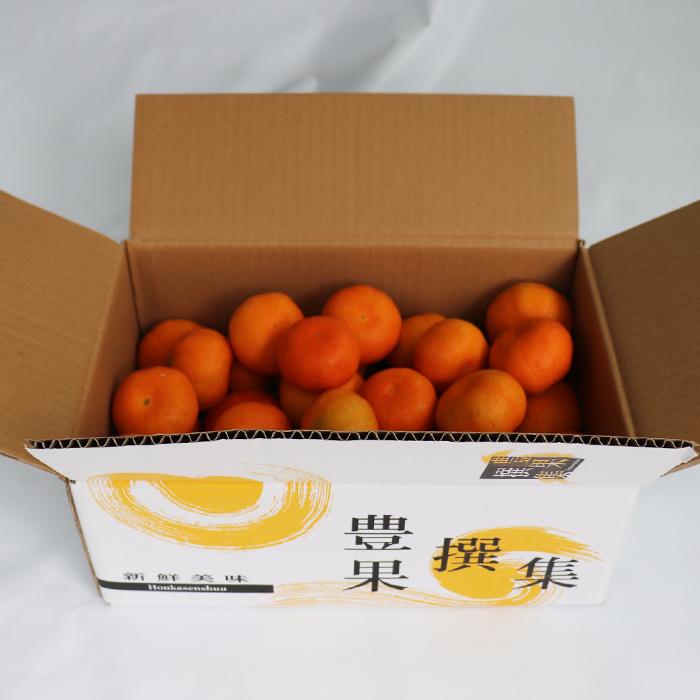 【ふるさと納税】オレンジ農園のハウスみかん 約3kg ※7月中旬~<37-A5009>