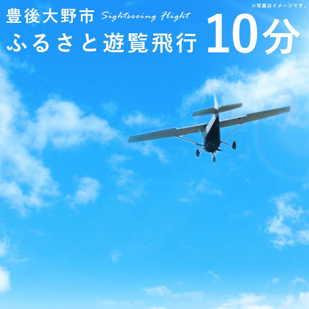 【ふるさと納税】豊後大野市ふるさと遊覧飛行 10分 3人まで搭乗可能 セスナ 飛行機 貸し切り 観光