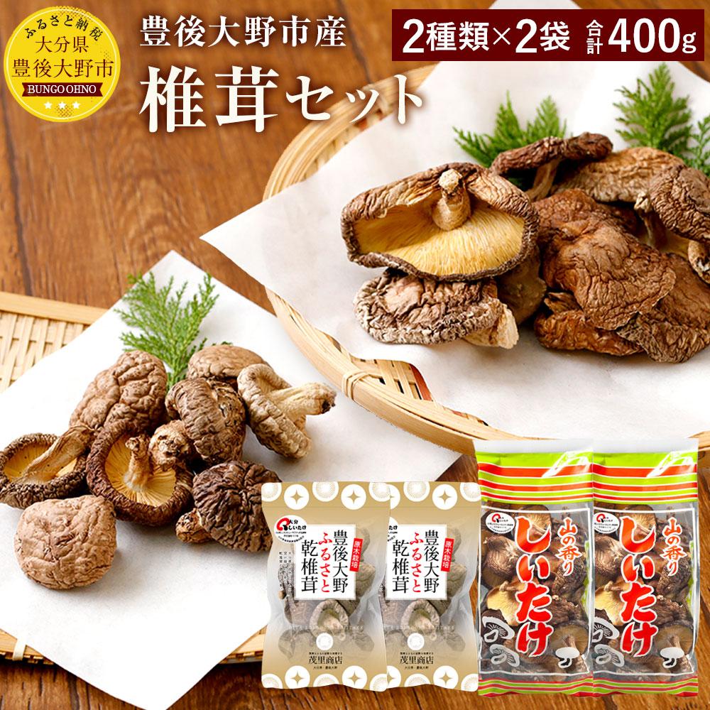 【ふるさと納税】豊後大野市産 椎茸セット 合計400g 2商品4袋セット しいたけ どんこ 干ししいたけ 九州 原木栽培 送料無料