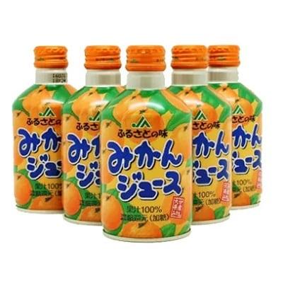 【ふるさと納税】ふるさとの味 みかんジュース(24本)【1078410】