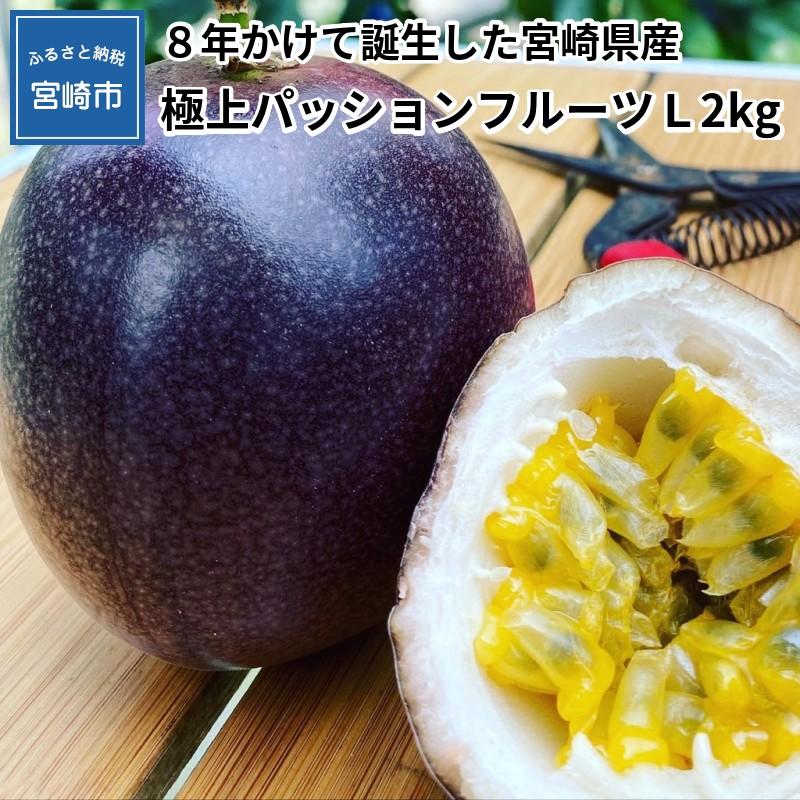 【ふるさと納税】《先行予約》8年かけて誕生した宮崎県産極上パッションフルーツ L 2kg