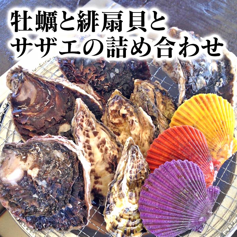 【ふるさと納税】牡蠣と緋扇貝とサザエの詰め合わせ