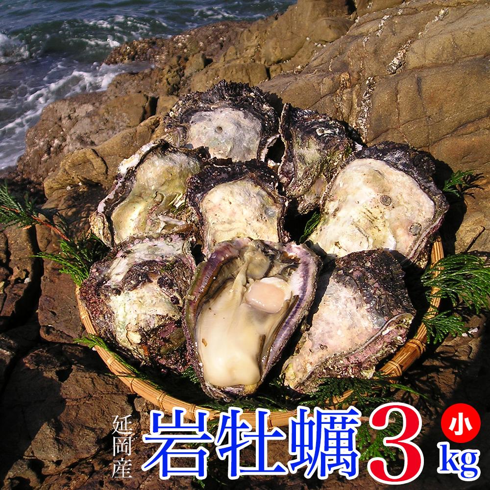 【ふるさと納税】延岡産天然岩牡蠣(生食用)3kg(小)(2019年4月から発送開始), ミトマン f093fe26