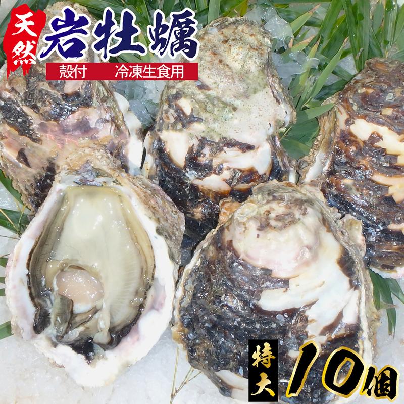 【ふるさと納税】延岡産天然岩牡蠣(冷凍生食用)特大サイズ10個(2020年4月から発送開始)