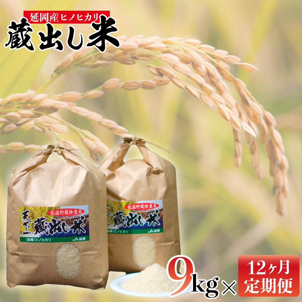 【ふるさと納税】天下一「蔵出し米」 4.5kg×2袋(12ヶ月連続配送)
