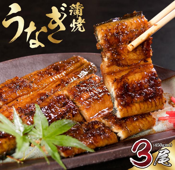 継承の技 伝統の甘味 厳選した素材と秘伝のタレ 職人手焼きうなぎ蒲焼3尾 計450g以上 無料 日本正規品 ふるさと納税