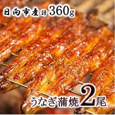 宮崎県日向市産 鰻楽ハーブうなぎ蒲焼2尾(360g)
