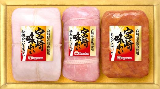 【ふるさと納税】南日本ハム(株)宮崎味わいブロック(10-67)