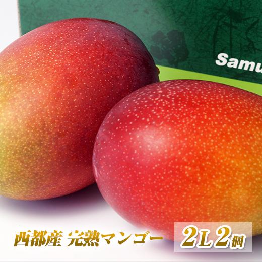 【ふるさと納税】西都産完熟マンゴー L×4個「鉢植栽培」【数量限定】