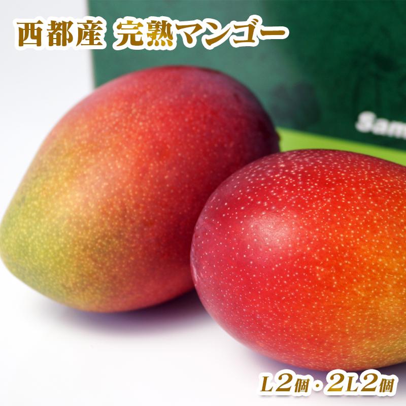 【ふるさと納税】西都産完熟マンゴー2箱 (L×2個入)(2L×2個入)セット【鉢植栽培】