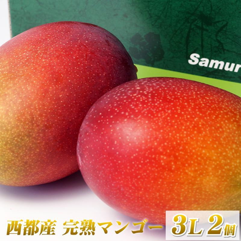 【ふるさと納税】西都産完熟マンゴー(3L×2個)「鉢植栽培」【数量限定】