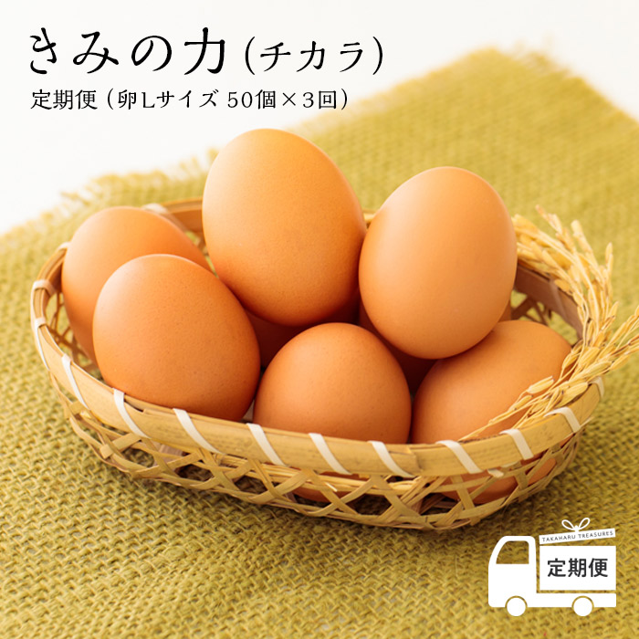 甘くておいしい逸品です ふるさと納税 宮崎県産特選 定期便年3回 きみの力 好評受付中 チカラ ※送料無料 ミネラルたっぷりのカキガラや上質な完全配合飼料ですくすく育った鶏が産む卵は甘くておいしい逸品です 卵 衛生管理に万全を期した環境の中 たまご 秀逸 空気と水のきれいな神武の里たかはるで