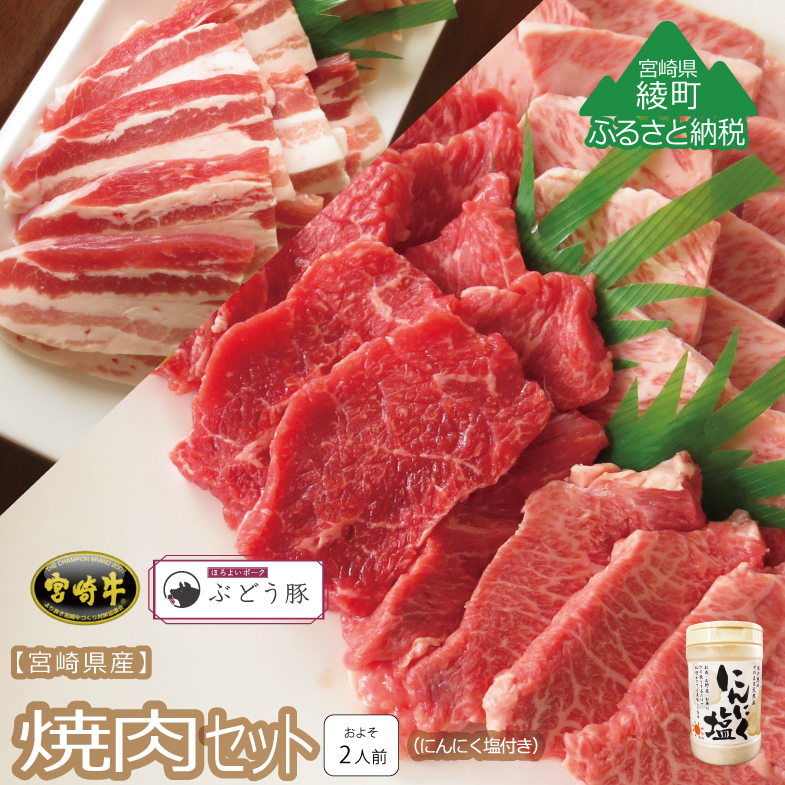 【ふるさと納税】『綾ぶどう豚』『宮崎牛』焼肉3種セット&にんにく塩