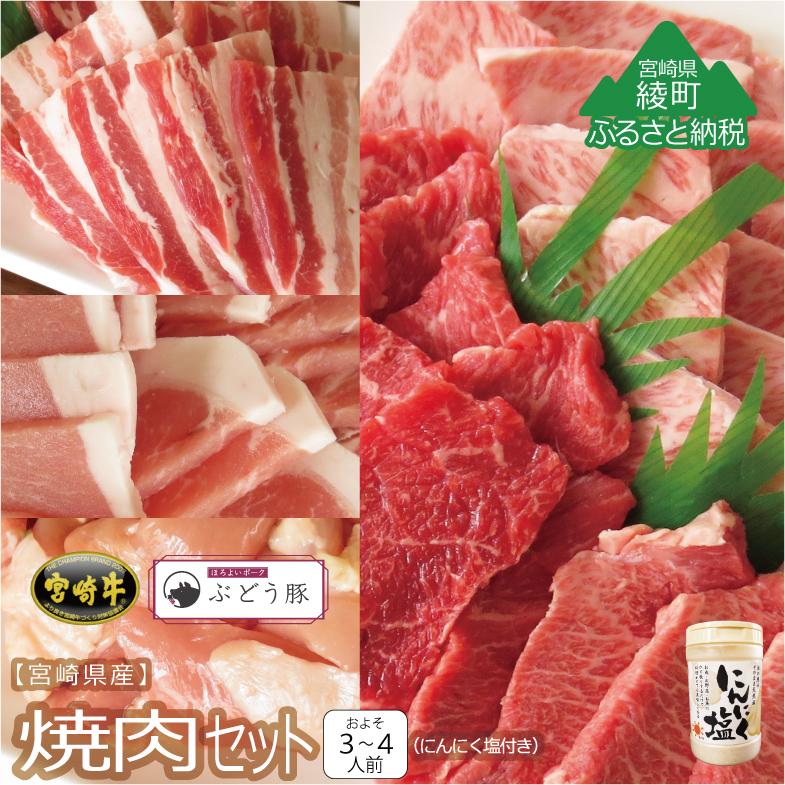 【ふるさと納税】『綾ぶどう豚』『宮崎牛』『宮崎産若鶏』焼肉5種盛りセット&にんにく塩