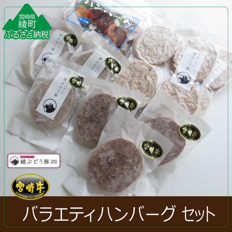 【ふるさと納税】バラエティハンバーグ4種セット