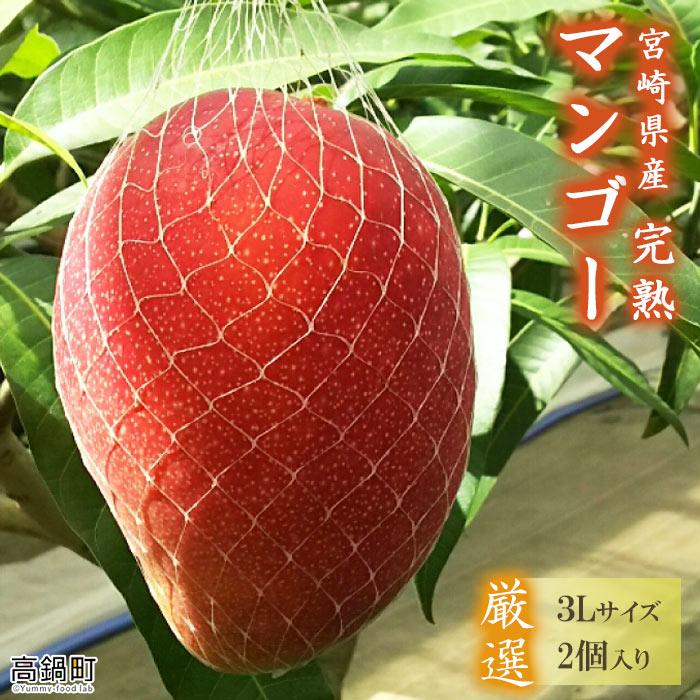 【ふるさと納税】<宮崎県産完熟マンゴー(3L×2個)> ※2021年4月初旬~6月末迄に順次出荷します。 果物 フルーツ 特産品 宮崎県 高鍋町【冷蔵】