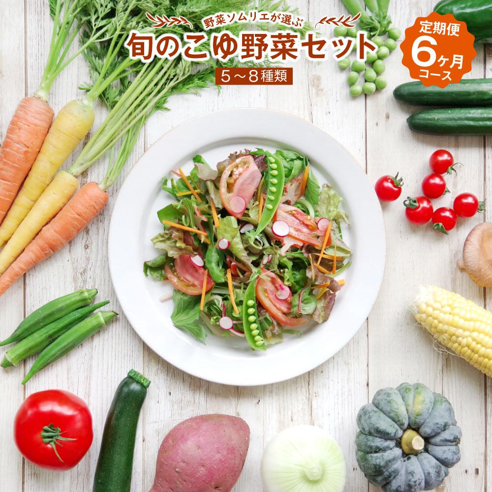 【ふるさと納税】野菜ソムリエが選ぶ 旬のこゆ野菜セット 6ヵ月コース 定期便 5~8種類 送料無料 盛り合わせ 国産