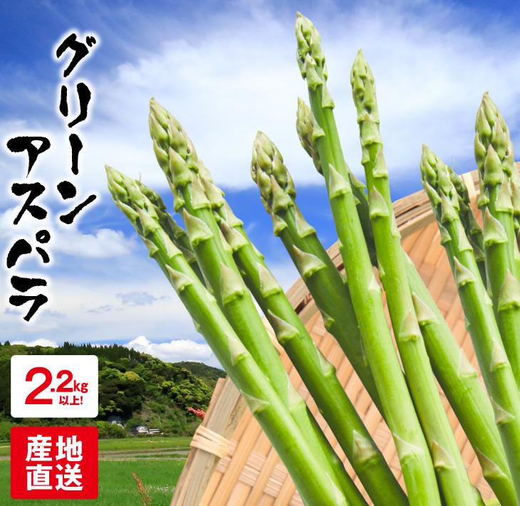 【ふるさと納税】グリーンアスパラ(計2.2kg以上)都農町産