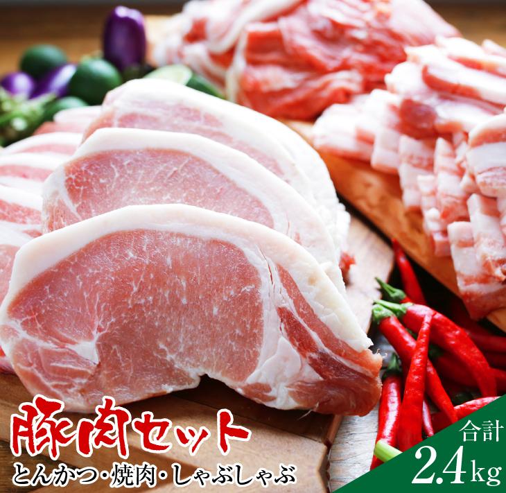 お得 家族みんなで楽しもう 冷凍 送料無料 ふるさと納税 都農町加工品 しゃぶしゃぶ豚肉セット2.4kg 贈与 焼肉 とんかつ