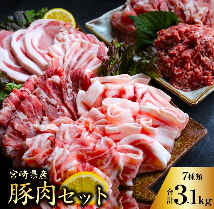 超激得SALE ふるさと納税 よりどりみどり宮崎県産豚肉セット 合計3.1kg 2020新作