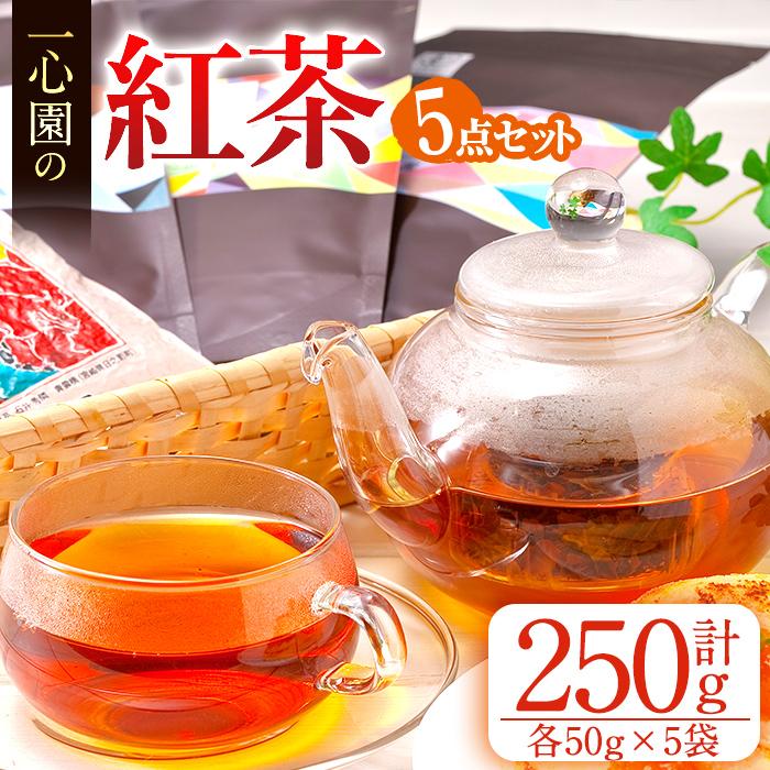 日本茶の品種を使用した紅茶は渋みが少なく甘い香りが特徴ふるさと納税 日之影町 特産品 70%OFFアウトレット ふるさと納税 爆安プライス ≪有機茶葉≫一心園の紅茶5点セット 一心園 計250g 各50g 紅茶好きの方へ A-98