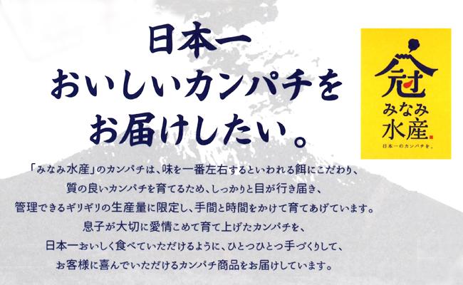 【ふるさと納税】母の手づくりカンパチみそ漬け・桜島巻