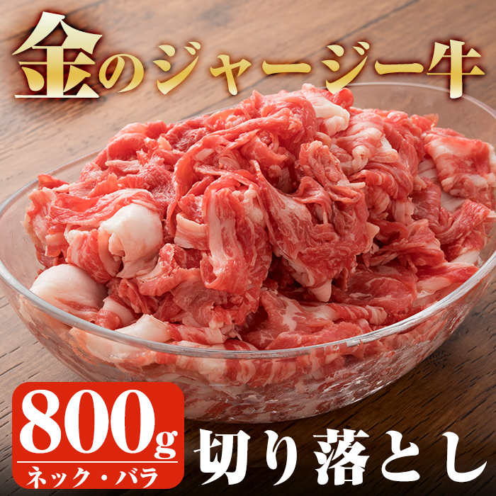 【ふるさと納税】金のジャージー牛切り落とし肉ネック・バラ肉(約800g)アミノ酸豊富な美味しい牛肉を使いやすい切り落とし肉で♪【白濱牧場】