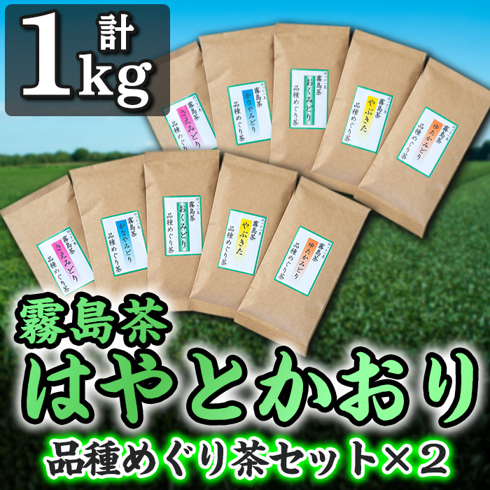 【ふるさと納税】霧島茶はやとかおり(詰合せ)品種めぐり茶セット×2