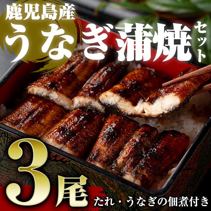 【ふるさと納税】鹿児島産うなぎ蒲焼セット