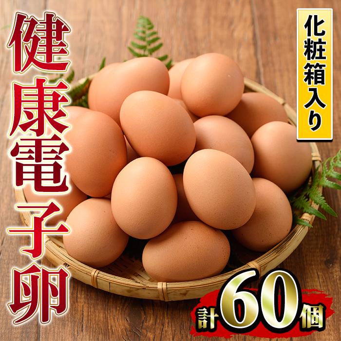 【ふるさと納税】《数量限定》鹿児島県産!健康電子卵(計60個·10個入り×6P)電子イオンを与えた水と飼料で体質改善された親鶏から生まれた新鮮なタマゴ!小分けパック入り【峯元養鶏】