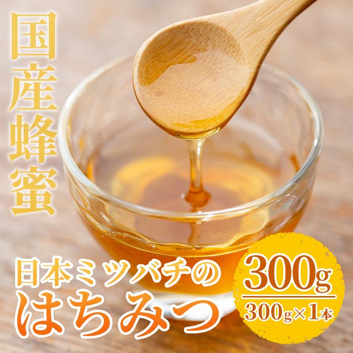 【ふるさと納税】<数量限定>国産!日本ミツバチの蜂蜜(300g×1本・計300g)国産はちみつ!ハチミツを合計お届け!贈答品やギフト・贈り物に!【セゾン企画】