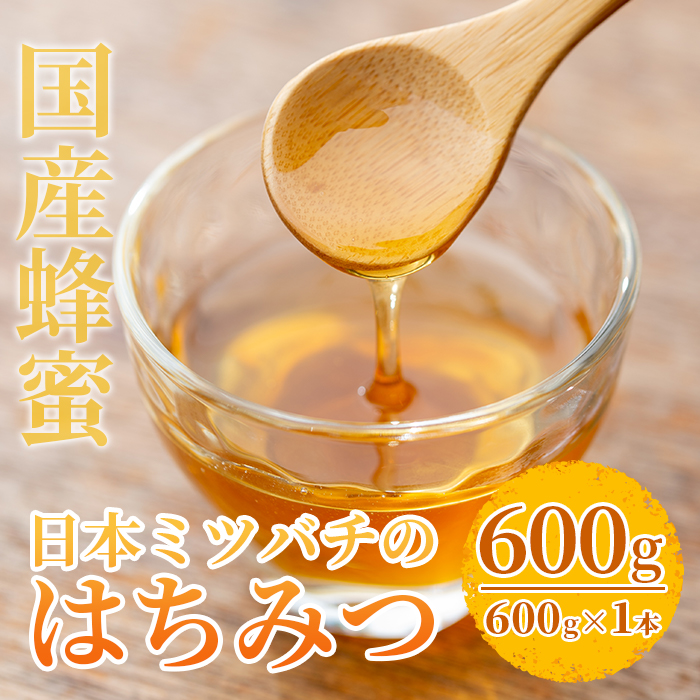 【ふるさと納税】<数量限定>国産!日本ミツバチの蜂蜜(600g×1本・計600g)国産はちみつ!ハチミツを合計お届け!贈答品やギフト・贈り物に!【セゾン企画】