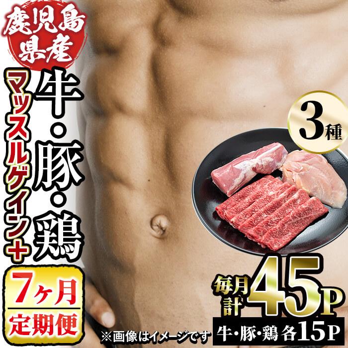 【ふるさと納税】【定期便・7ヶ月】和牛日本一!鹿児島県産黒毛和牛赤身肉・黒さつま鶏・豚肉でマッスルゲインプラスコース!毎月、赤身牛肉250g・鶏むね肉1枚・豚ひれ肉ブロック1/2を各15日分、7ヶ月間お届け!ヘルシーなお肉で健康的な筋肉を!【ナンチク】t100-002