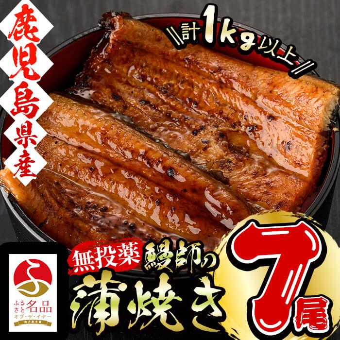 鹿児島県産 山田水産 鰻 蒲焼 1kg