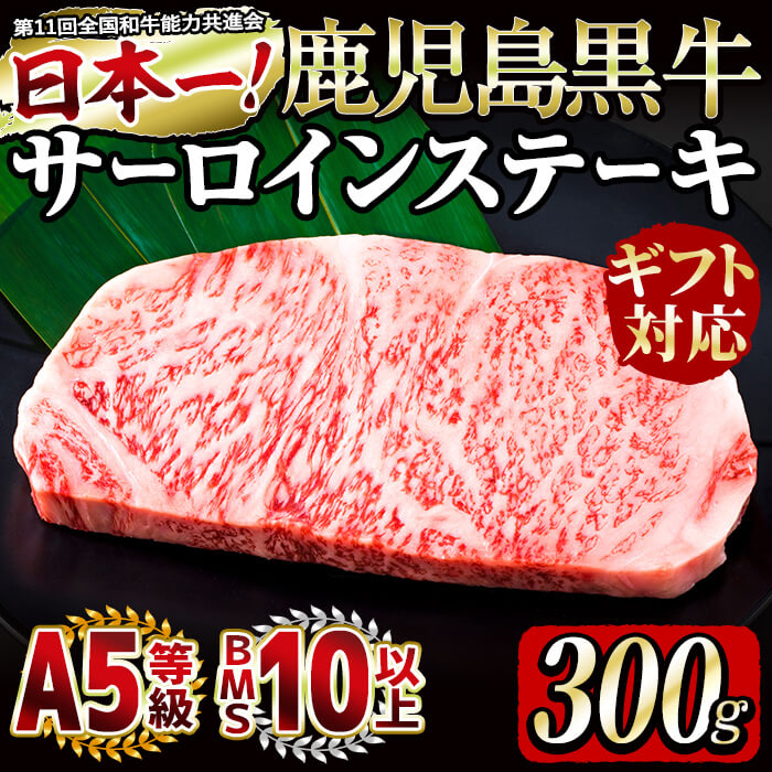 【ふるさと納税】【毎月数量限定20セット・ギフト対応】和牛日本一<鹿児島黒牛・5等級BMS10以上>サーロインステーキ(300g×1枚)バランスの良い霜降り牛肉!最高の肉質を持つ部位!大切な方への贈り物に【ギフト専用】【そお鹿児島】c6-047