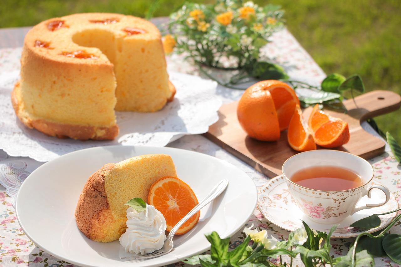 【ふるさと納税】奄美のくちどけシフォンケーキ(たんかん・パッションフルーツ)